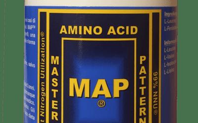 Cosa sono i MAP?