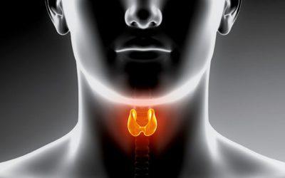 Esiste un rapporto tra disfunzioni tiroidee e invecchiamento?