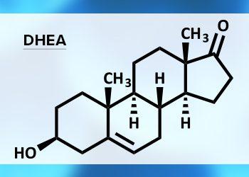 DHEA: l'ormone ANTI-AGING